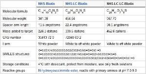 Amine reactive biotinylation reagents, EZ-Link™